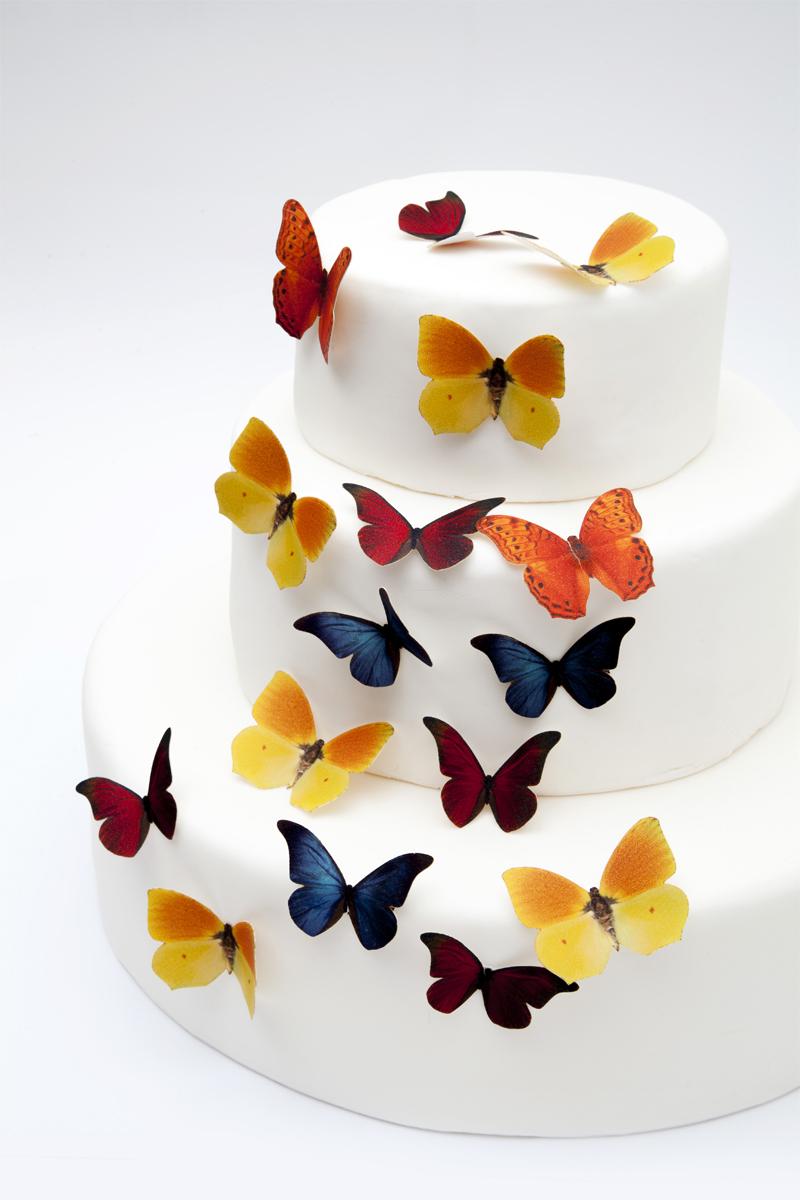 Barevní motýlci z jedlého papíru